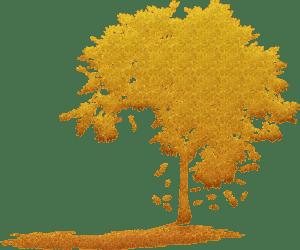 tree-silhouettes-5067441_1920